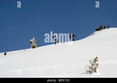 Les alpinistes sur les skis l'ascension d'une crête couverte de neige de la région en haute montagne, Rofan, Tyrol, Banque D'Images