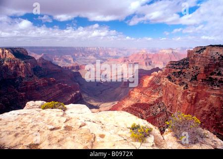 Cape Royal, North Rim du Grand Canyon, le Parc National du Grand Canyon, Arizona, USA, Amérique du Nord Banque D'Images