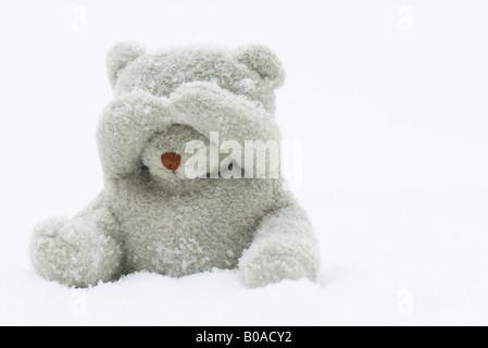 Ours assis dans la neige, couvrant ses yeux avec ses mains Banque D'Images