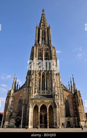 Ulmer Münster, Cathédrale d'Ulm, vue de face et clocher, minutieusement sculptés et décorés, Ulm, Bade-Wurtemberg, Allemagne, Euro