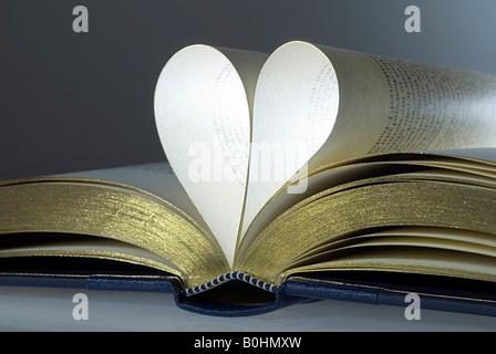 Livre ouvert, pages pliées en forme de cœur Banque D'Images