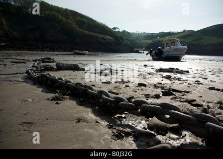 Watermouth Cove, Devon, Angleterre Banque D'Images