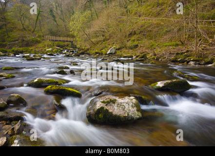 Riverside à Watersmeet pittoresque scène Devon UK River East Lyn Banque D'Images