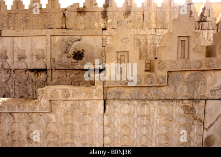 Palais Apadana escaliers, Persepolis, Iran Banque D'Images