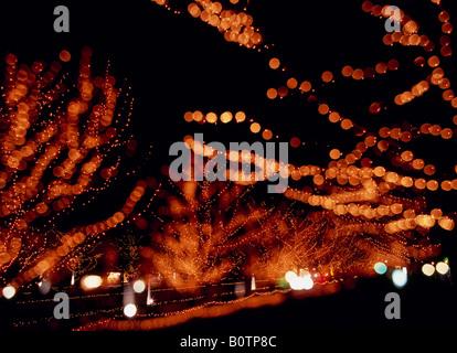 Les arbres illuminés, Tokyo, Japon Banque D'Images