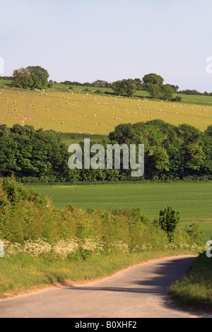 United Kingdom West Sussex an empty country road fonctionnant par les South Downs Banque D'Images