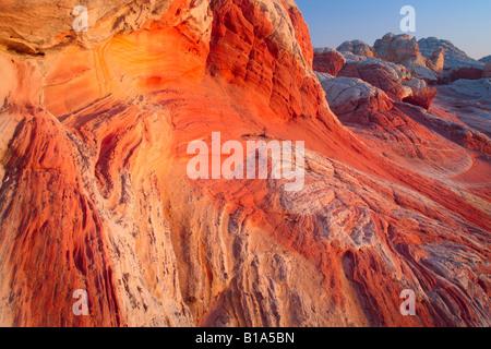 Tourbillons de grès au 'White Pocket' dans la région de Vermilion Cliffs National Monument, Arizona Banque D'Images