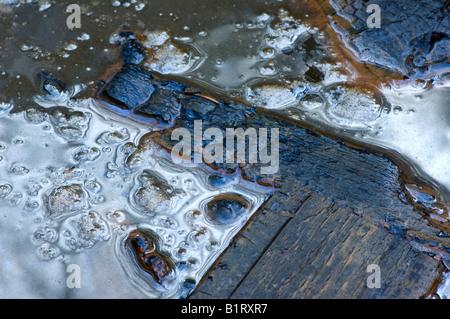 Bois partiellement brûlée flottant dans l'eau sale Banque D'Images