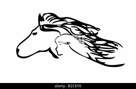 Tête de cheval, tête humaine