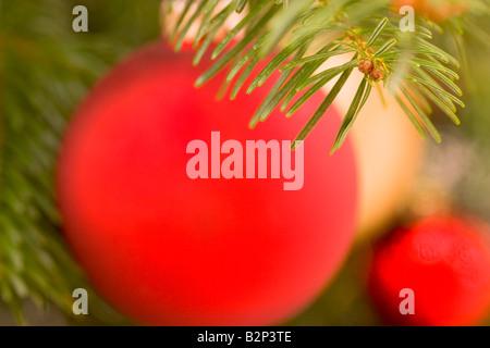 Arrière-plan flou de décorations de Noël l'accent sur les aiguilles de sapin en premier plan