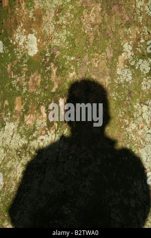 One man's Shadow sur l'écorce des arbres dans la campagne Banque D'Images