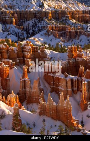 Les cheminées à Bryce Canyon's Sunset Point pendant l'hiver