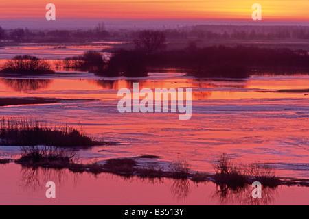 Lever de soleil à Parc national de Biebrza, Pologne Banque D'Images