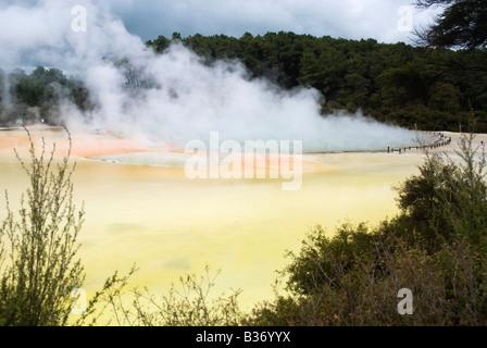Une vue de la cuisson à la piscine de Champagne à Wai-O-Tapu parc thermal, Rotorua, Nouvelle-Zélande Banque D'Images