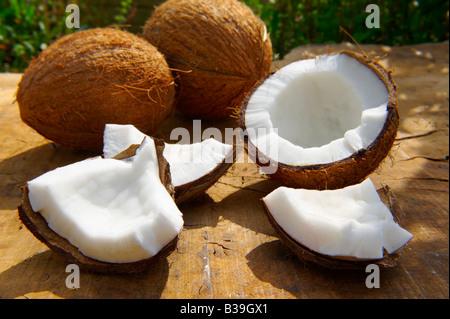 Noix de coco fraîche, toute entière et ouverte sur une table dans un cadre de jardin Banque D'Images