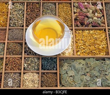 Thé aux herbes sur un mélange de diverses herbes séchées Banque D'Images