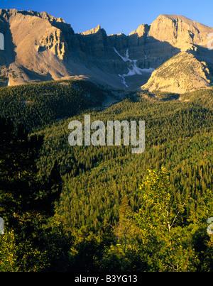 Le Parc National du Grand Bassin, NEVADA. USA. Wheeler & Jeff Davis Peaks s'élever au-dessus des pentes boisées Banque D'Images