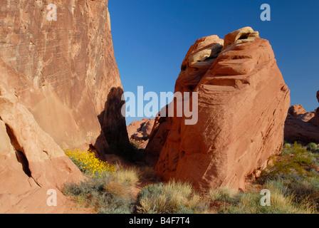 Formations rocheuses dans la Vallée de Feu State Park près de Las Vegas, Nevada Banque D'Images