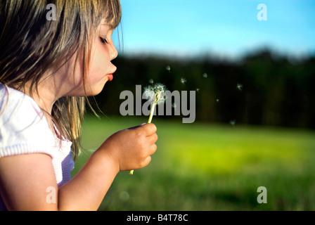 Un petit enfant fille mignonne, blowing dandelion sur un pré Banque D'Images