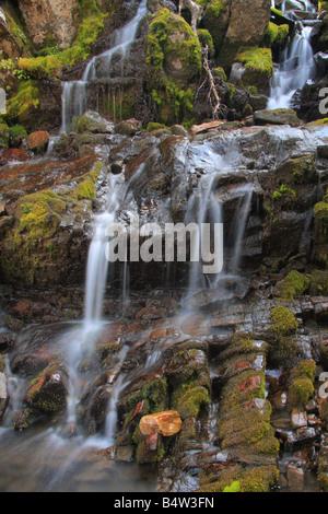 Les cours d'eau en cascade sur les prés de la rivière Highwood Sentier au col de la rivière Highwood, Kananaskis, Banque D'Images