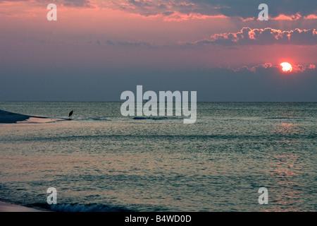 Le lever du soleil sur la plage sur le golfe du Mexique avec de beaux ciels colorés et le grand héron en arrière-plan
