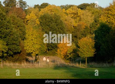 Couple en train de marcher dans un parc entouré de couleurs d'automne, le Nonsuch Park, Cheam, (sud-ouest de Londres), Banque D'Images