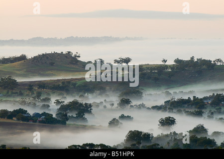 Matin, Avon Valley, New York, Australie occidentale, Australie Banque D'Images