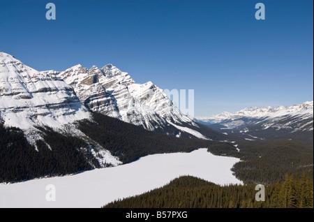 Le lac Peyto, sommet Bow, Banff National Park, site du patrimoine mondial de l'UNESCO, des montagnes Rocheuses, Banque D'Images