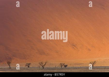 Dunes de sable, Sossusvlei, Namib Naukluft Park, Désert du Namib, Namibie, Afrique Banque D'Images