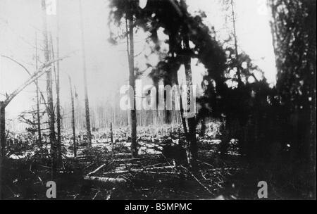 9 1916 318 A1 7 E Bataille de Postawy forêt détruit 1916 World War 1 Front de l'est la défaite des troupes russes après une offen