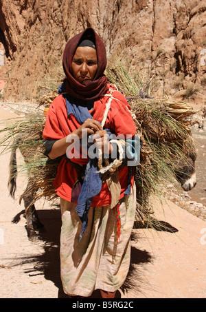 Femme berbère nomade avec âne dans les montagnes de l'atlas maroc Banque D'Images