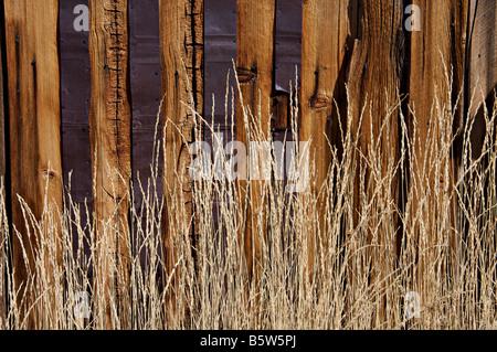 Bois patiné et conseils d'ancien bâtiment avec des herbes sèches contre eux contrastées Banque D'Images