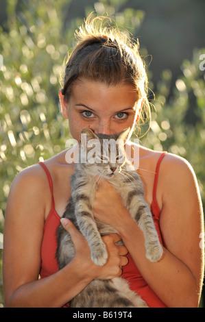 Jeune chat tigré gris étant détenu par une fille, smooching avec la fille