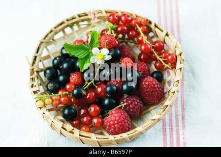Variété de fruits dans le panier en bois Banque D'Images