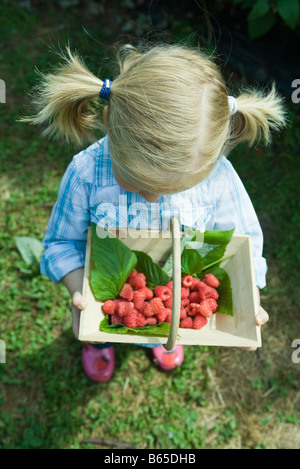Little girl holding panier de framboises, high angle view Banque D'Images