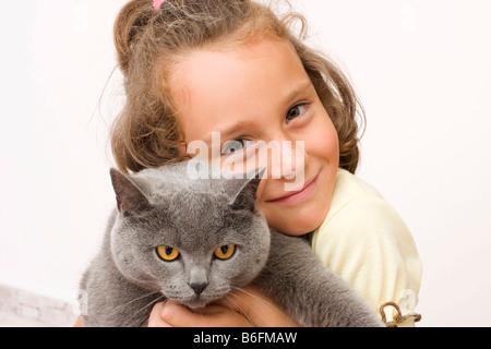 Fille, 6 ans, avec chat British Shorthair, bleu Banque D'Images