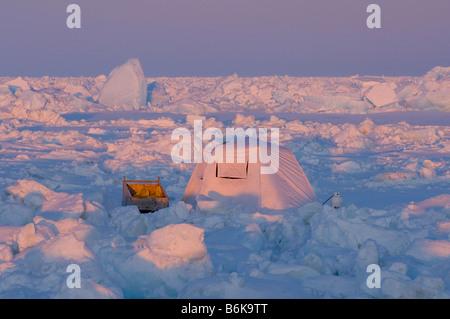 Four arctique tente avec un traîneau sur la banquise au cours de la mer de Tchoukotka durant la saison de chasse Banque D'Images