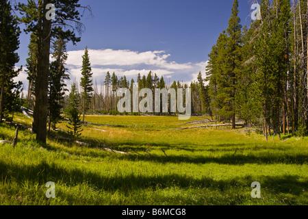 Le parc national de Yellowstone au Wyoming USA Riddle Lake