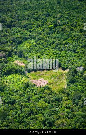 Le Suriname, Laduani, sur la rive de la rivière Suriname Boven. Vue aérienne de la forêt et zone déboisée, utilisé pour l'agriculture.