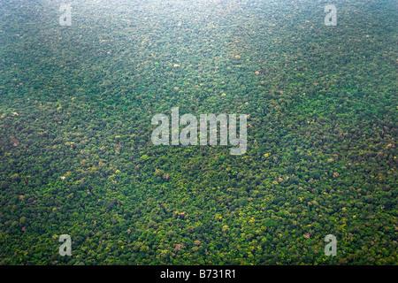 Le Suriname, Laduani, sur la rive de la rivière Suriname Boven. Vue aérienne de la forêt.