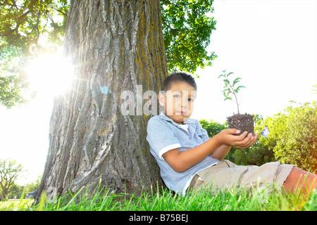 Un garçon de six ans est titulaire petit arbre, assis à côté de grand arbre, Winnipeg, Canada Banque D'Images