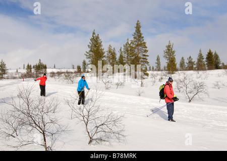 Ski nordique, du ski de fond dans le parc national Urho Kekkonen, Kiilopaeae, Ivalo, Laponie, Finlande, Europe Banque D'Images
