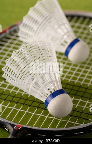 Raquette Badminton deux Birdies sur Banque D'Images