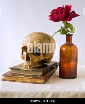 Le crâne de vieux livres et de rose dans une vieille bouteille médicale Banque D'Images