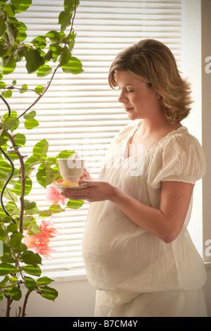 Femme enceinte de boire une tasse de thé de fines herbes Banque D'Images
