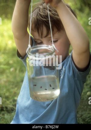 Jeune garçon à la recherche de têtards dans un pot de confiture Banque D'Images