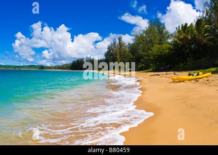 Kayaks sur la plage vide à la baie de Hanalei île de Kauai Hawaii