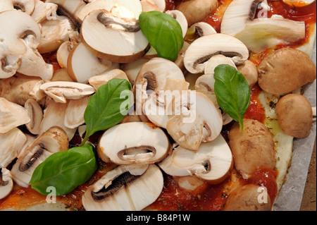 Champignons Champignons Pizza basilic tomate champignon basilikum cuire la pâte de base de fromage frais aux herbes Banque D'Images