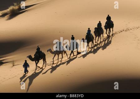 Avec une caravane de chameaux et certains, c'est marcher dans un désert de sable Merzouga Sud Maroc Banque D'Images