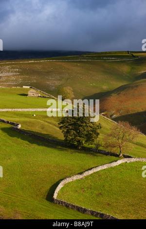 Les murs en pierre et granges nr Kettlewell, Wharfedale, Yorkshire Dales National Park, England, UK
